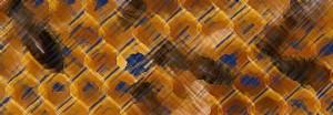 cropped-prodottoAlveare-blu